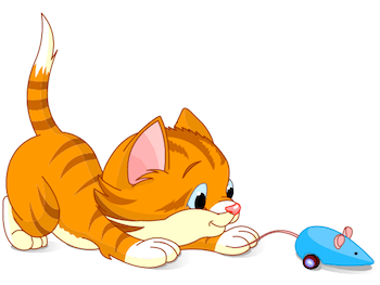 Cat playing with its toy mouse.